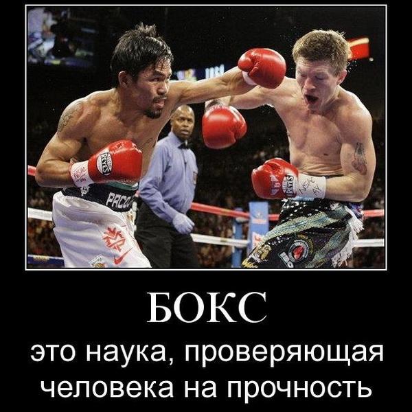 Вторую жизнь бокс получил в англии где